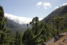 image 20111024-la-palma-parque-nacional-1-la-caldera-de-taburiente-jpg