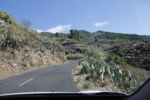 afbeelding 20111024-la-palma1-onderweg-naar-casa-victor-jpg