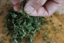 Ris de blaadjes van de tijmtakjes