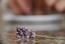 Bewaar vier bloemen voor de garnering