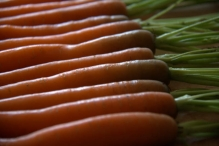 Was de wortels