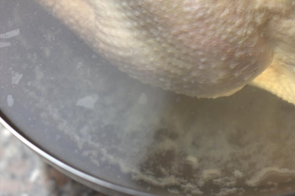 afbeelding 19-perfecte-kip-zet-8-uur-in-de-koelkast-jpg