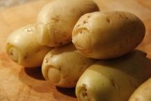 Alle aardappels klaar voor de oven